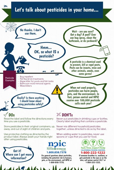 Let's talk about pesticides in your home