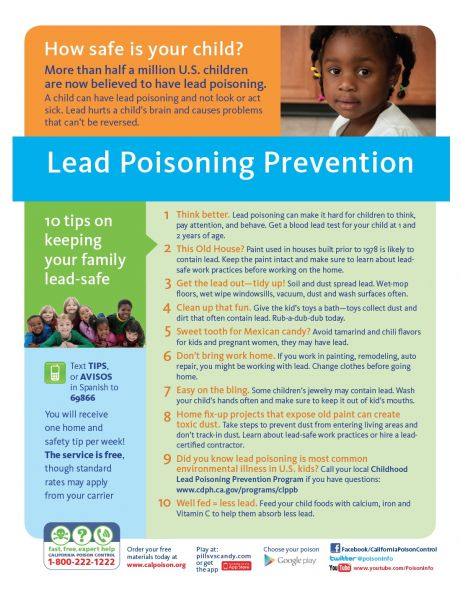 lead poisoning prevention PDF.